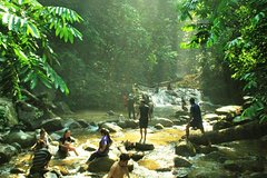 Imagen Jungle Trek to a Waterfall With Jungle Guide at The Dusun From Kuala Lumpur