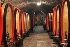 Wine Tasting in Tuscany by Florence Wine Tour