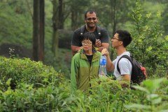 Activities,Activities,Nature excursions,Nature excursions,