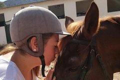 Imagen Beach Horseback Riding in Cartagena