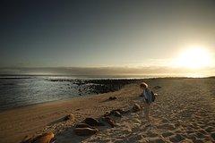 Activities,Activities,Water activities,Adventure activities,Nature excursions,