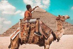 Ver la ciudad,City tours,Tours con guía privado,Tours with private guide,Especiales,Specials,Pirámides de Gizeh,Pyramids of Giza,Crucero por el Nilo,Nile Cruise,Museo Egipcio,Egyptian Museum