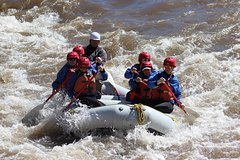 Arizona Rafting on the Salt River - Half Day Rafting Trip