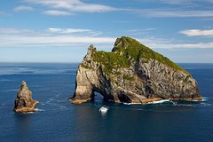Imagen Private Tour: Bay of Islands Day Trip from Auckland