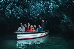 Imagen Private Tour: Waitomo Caves Day Trip from Auckland