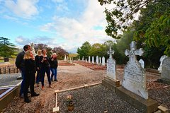 Barossa Cultural Walking Tour
