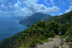 Private Amalfi Coast Tour with Path of the Gods