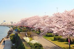 Asakusa and Sumida Park Tokyo