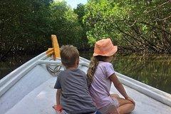Imagen Langkawi Mangrove Forest & Cave Exploring Boat Private Tour