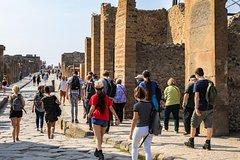 Pompeii: 2 hour walking tour with priority admission ticket
