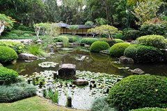Nature Lover's Brisbane Botanic Gardens Private Tour with Local Guide