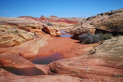 Valley of Fire Half-Day Photo Tour from Las Vegas