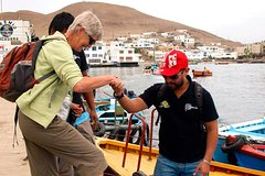 Imagen Half-Day Tour Pucusana Fishing Village and Wildlife from Lima