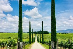 Wine tour & cooking lesson in Tuscany, from Perugia