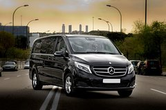 Arrival Private Transfer from Turin Airport TRN to Turin City by Luxury Van