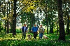Truffle Hunting Association