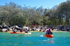 South Stradbroke & Wave Break Island kayak,snorkel &paddle board tour with lunch