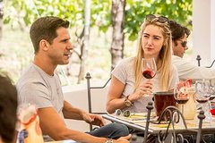 Mount Vesuvio Organic Wine Tasting & Lunch with Transfer from Pompeii