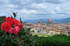 Florence Private Day Tour from Rome