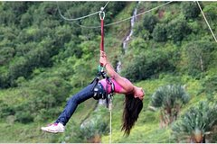 Canopy tour and Cradle of Human Kind Private
