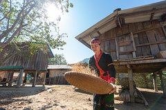 Day trip to visit ethnic villages and hill town