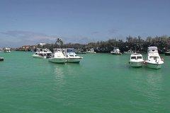 Imagen Transfer from Santa Cruz Island to San Cristobal Island