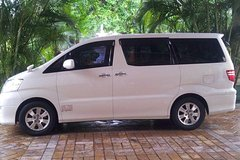 Port Antonio Hotel Private Roundtrip Airport Transfer from Kingston Airport(KIN)