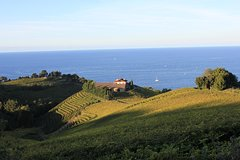 Recorrido de la Viña Txakoli por la costa desde San Sebastián