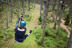 Imagen Round-Trip Private Transfer from Auckland to Tree Adventures