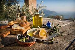 Oilve Oil & Wine in the Euganean Hills