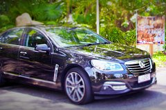 Cairns Airport to Palm Cove & Northern Beaches Transfer