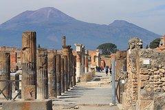 Full-Day Tour Vesuvius Herculaneum