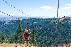 Activities,Adventure activities,Adrenalin rush,Christchurch Tour