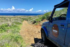 All Inclusive Private Off-Road Tour Snorkeling and Restaurant Lunch
