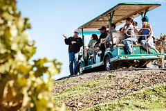 2-Day Muir Woods and Wine Country Tour from San Francisco