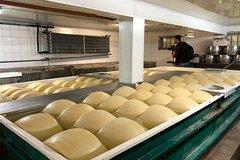 Parma Cheese Tour & Tasting