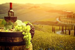 Chianti Mood: an intimate experience in two boutique wineries - Private Tou