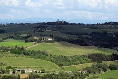 Chianti: Wine and Food experience in the Tuscan countryside
