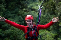 Imagen Ultimate Rotorua Forest Zipline Canopy Adventure