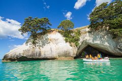 Imagen Coromandel and Cathedral Cove Day Trip from Auckland