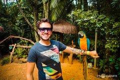 City tours,Theme tours,Historical & Cultural tours,Bird Park