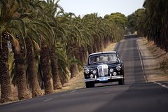Imagen Private Barossa Valley Winery Tour by Classic 1962 Daimler from the Barossa Valley