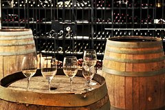 Chianti Lovers Tour- 2 Wineries and SuperTuscan Small Group from Pisa