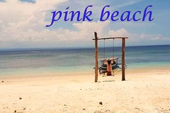 amazing pink beach tour