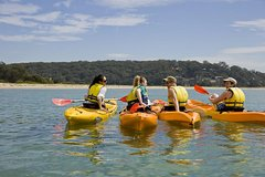 Beginner's Kayak Tour in Sydney - Gorgeous Aussie Beaches and Bays