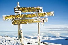 7 Days Mt Kilimanjaro Climbing Rongai Route - Group Joining Tour