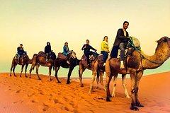Excursions,Multi-day excursions,Excursión to the desert