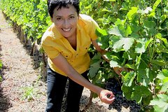 Women in Wine - Chianti Wine Region Tasting Tour in Tuscany (only Woman)