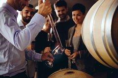 Luxury Ultimate Wine Tasting Tour in Bolgheri Wine Region (Tuscany)