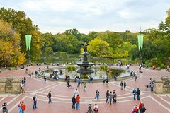 Central Park Horse Carriage Rides & Tours
